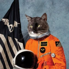 Klaxons (Клаксонс): Surfing The Void (RSD2020)