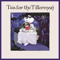 Yusuf: Tea For The Tillerman 2