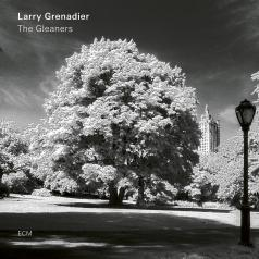 Larry Grenadier (Ларри Гренадьер): The Gleaners