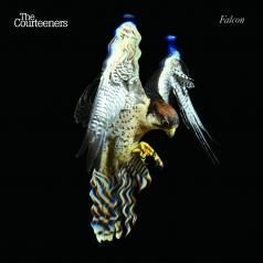 The Courteeners: Falcon (RSD2019)