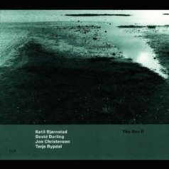 Ketil Bjornstad (Кетиль Бьёрнстад): The Sea II