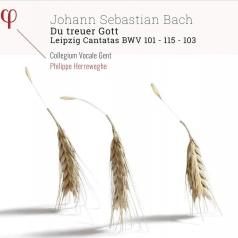 Johann Sebastian Bach (Иоганн Себастьян Бах): Bach: Du Treuer Gott - Leipzig Cantatas Bwv 101, 103, 115