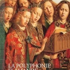 La Polyphonie Flamande
