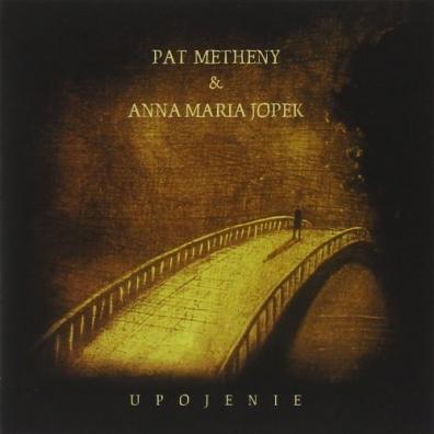 Pat Metheny (Пэт Метени): Upojenie