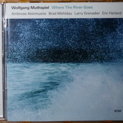 Wolfgang Muthspiel: Where The River Goes