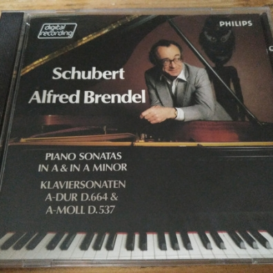 alfred brendel schubert essay The definitive collection of alfred brendel's writings combines his two classic books, musical thoughts and afterthoughts and music sounded out and also includes new, previously unpublished essays.