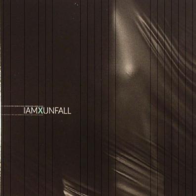 IAMX (IAMX): Unfall