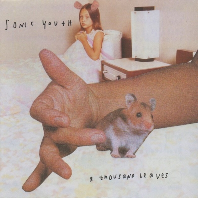 Sonic Youth: A Thousand Leaves