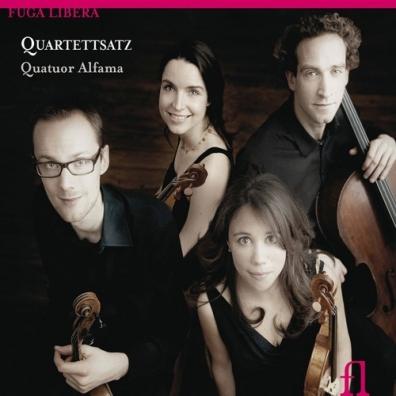 Quatuor Alfama: Quartettsatz