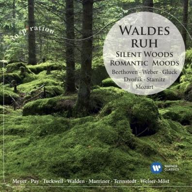 Sabine Meyer (СабинаМайер): Silent Woods: Romantic Moods
