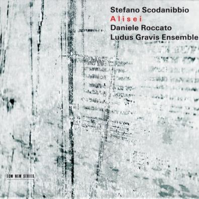 Stefano Scodanibbio (Стефано Скоданиббио): Alisei