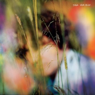 Sam Amidon (Сэм Амидон): Sam Amidon
