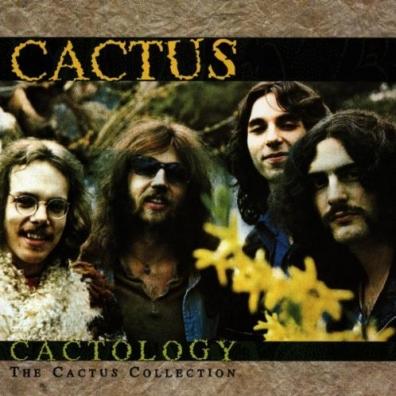 Cactus: Catology