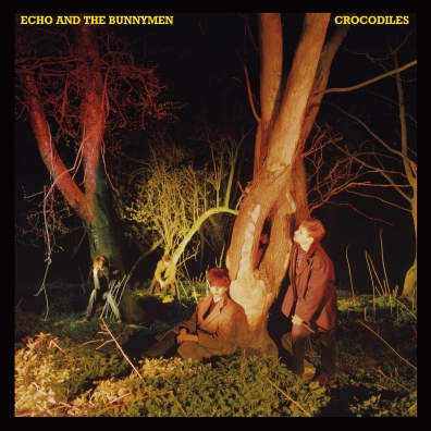 Echo & The Bunnymen (Ечо & Тхе Буннымен): Crocodiles