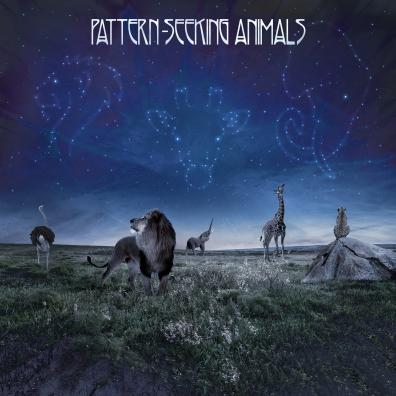 Pattern-Seeking Animals: Pattern-Seeking Animals
