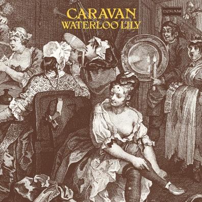 Caravan (Караван): Waterloo Lily