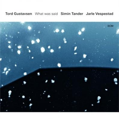 Tord Gustavsen: Tord Gustavsen: What Was Said